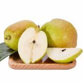 红香酥梨 非库尔勒香梨 现摘现发新鲜梨子  新鲜水果 净果3斤 3斤装