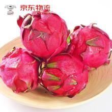 现摘红心火龙果新鲜5斤9斤红肉大果宝宝辅食应季孕妇水果 精选大果5斤装