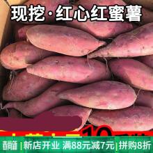 新鲜红心红薯蜜薯板栗薯沙地小红薯农家自种生的糖心番薯地瓜 5斤 小果