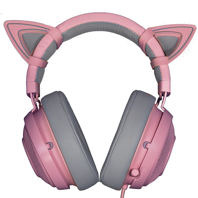 PROFESSIONAL EDITION V2 PINK