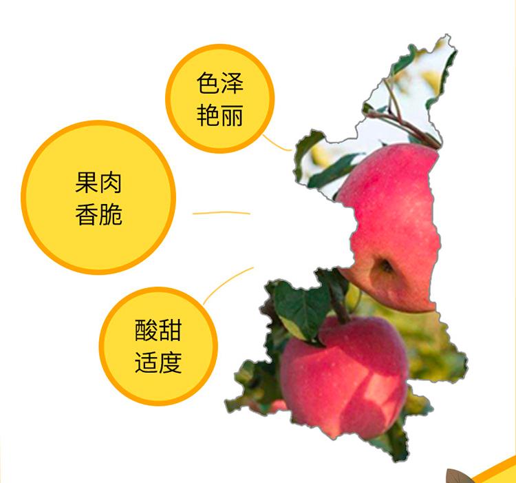 http://img10.360buyimg.com/o2o/jfs/t1/161522/12/17364/221446/606efc33Ed31f7726/2d58d1cf91ca2bf0.jpg