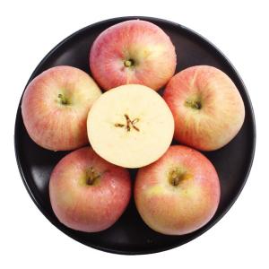 京东PLUS会员、PLUS会员:唐鲜生 山西红富士苹果 带箱约10斤 主图